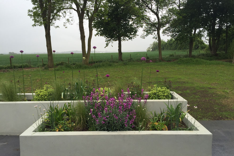 Contemporary style country garden, Kinsborne Green