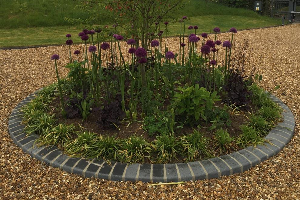 Contemporary style country garden, Kinsborne Green