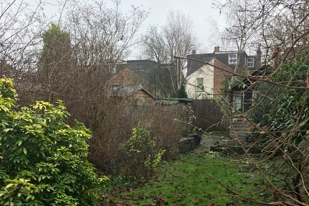 Small garden, St Albans