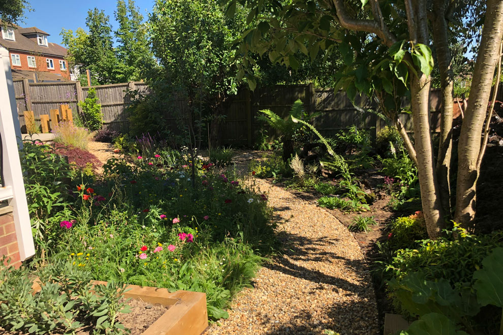 Wildlife friendly garden, Harpenden