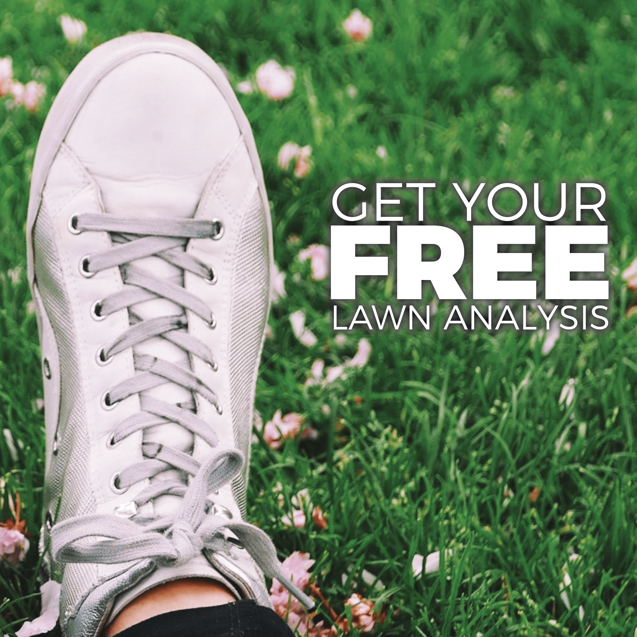 Southern Lawns social media post