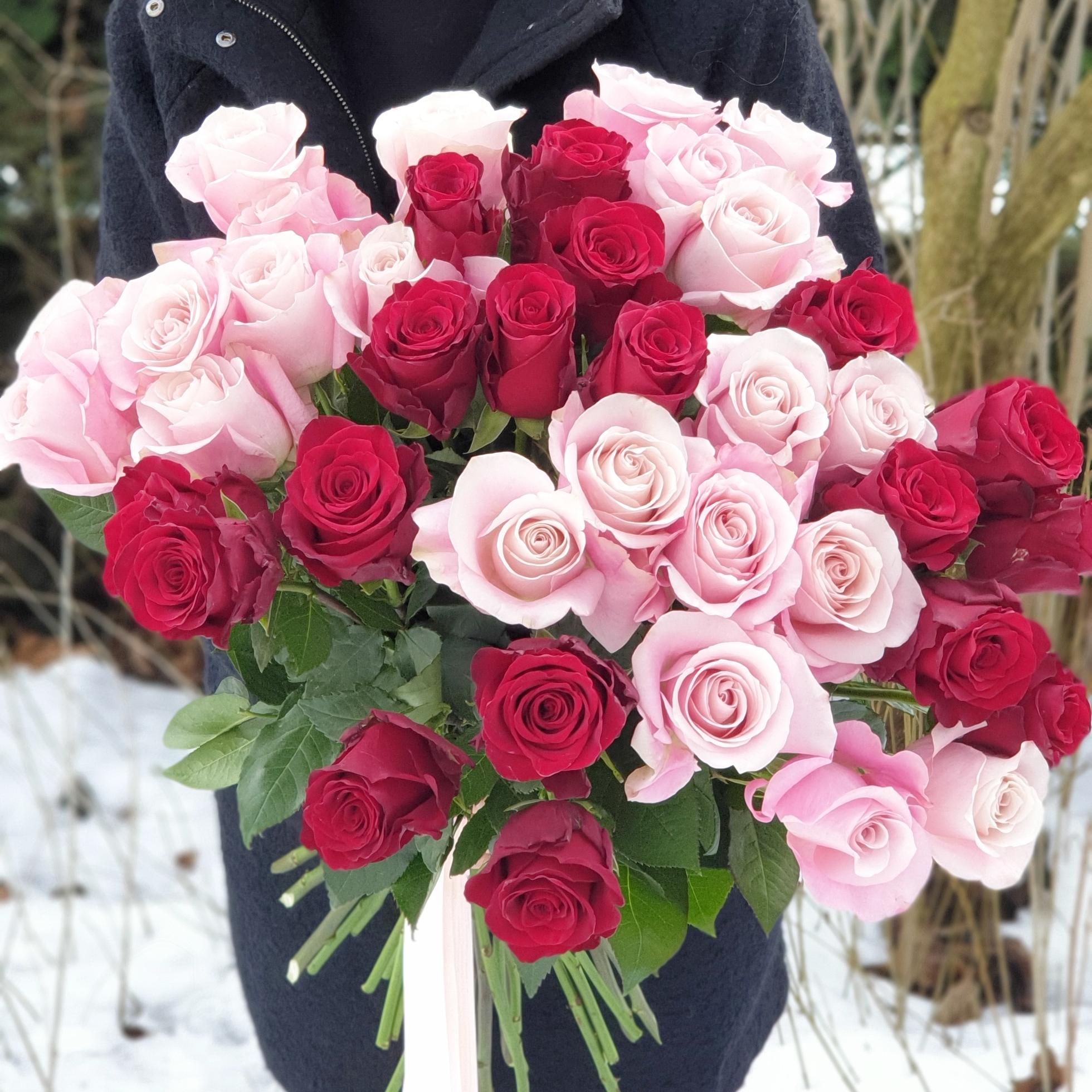 Le jardin de Valentin