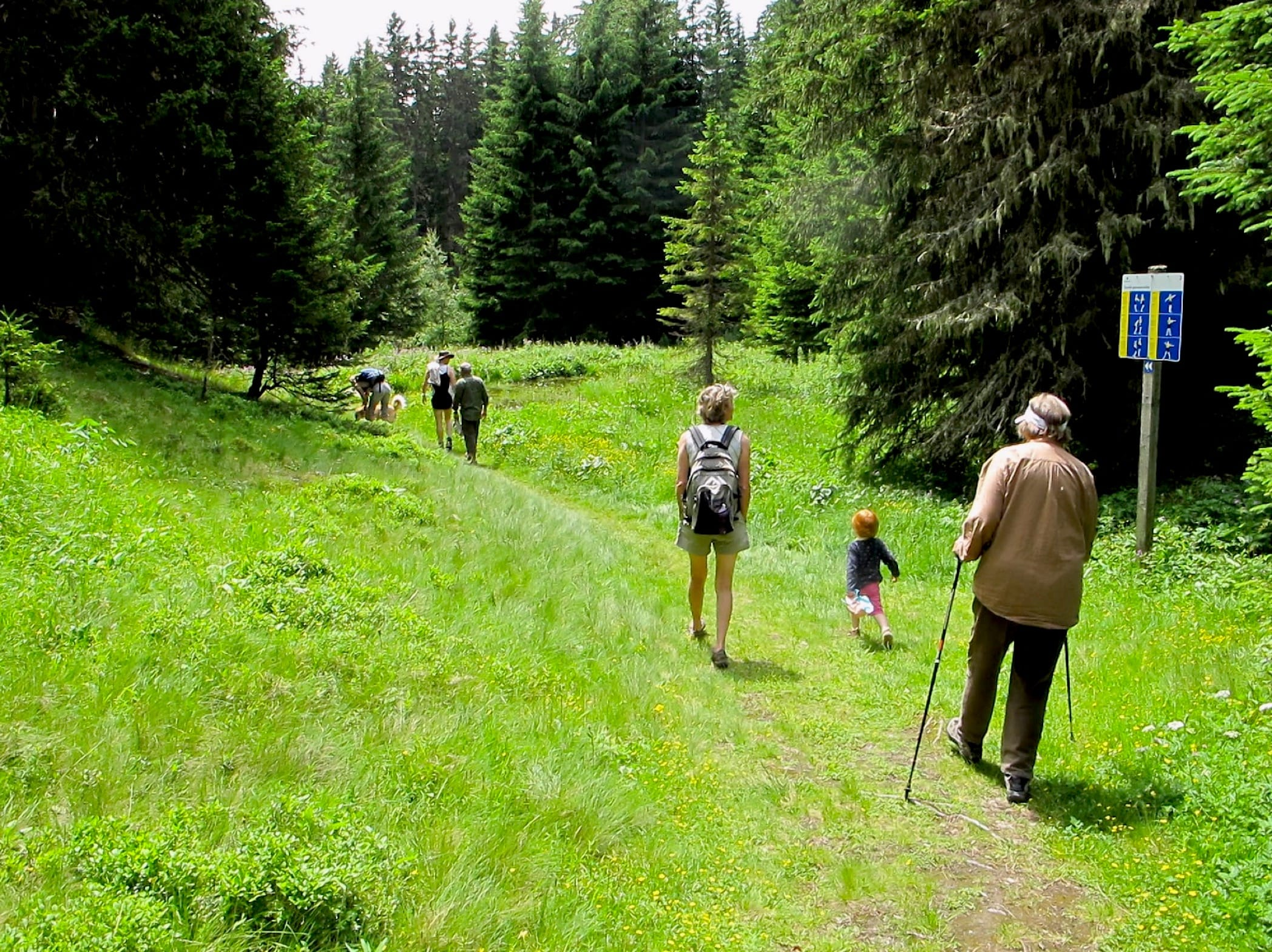 photo of family hiking in the woods in the Valais