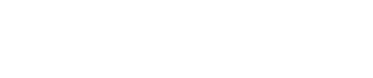 Bridge City News Logo