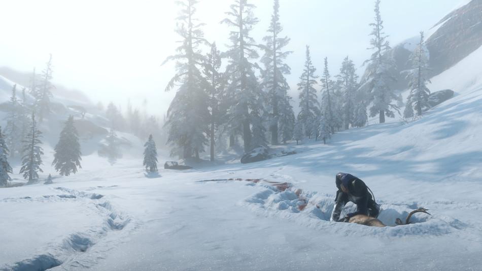 Snow RDR2