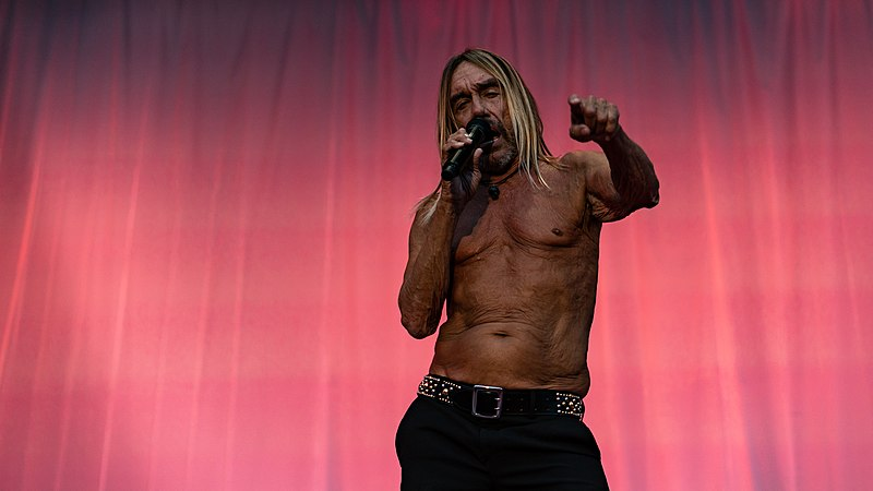 File:Iggy Pop WOWGoth090818-192 (45874833731).jpg