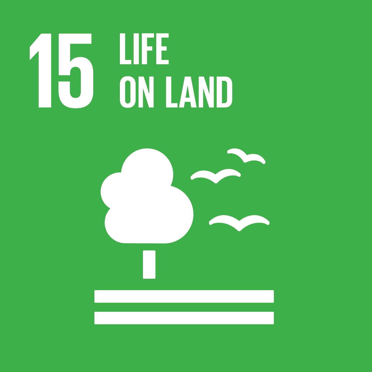 15 Life on Land SDG