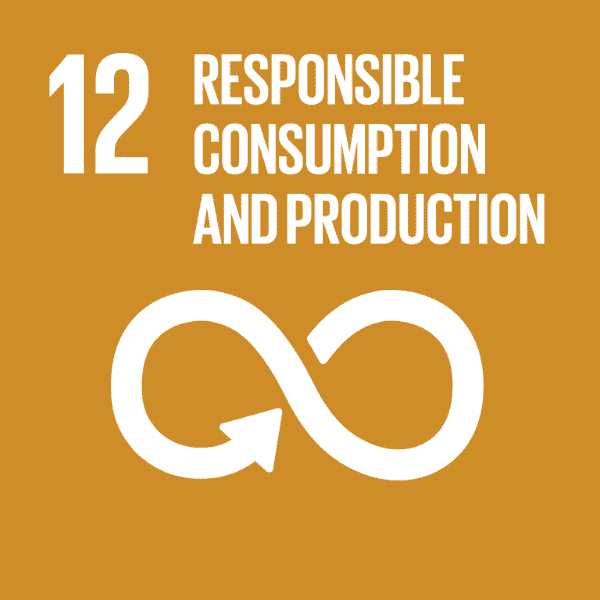 12 Responsible Consumption and Production SDG