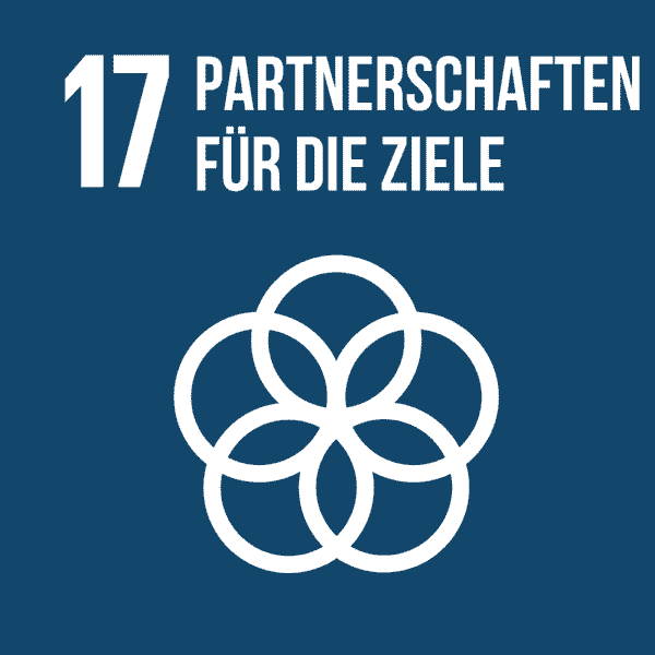 17 Partnerschaften für die Ziele