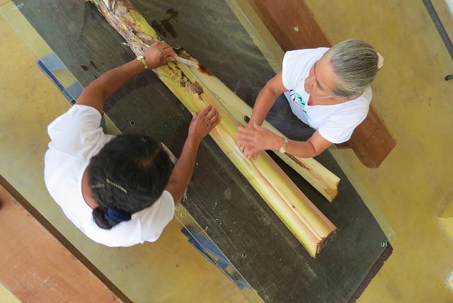 Duas artesãs retiram a fibra da pupunheira que dará vida a VegPlac