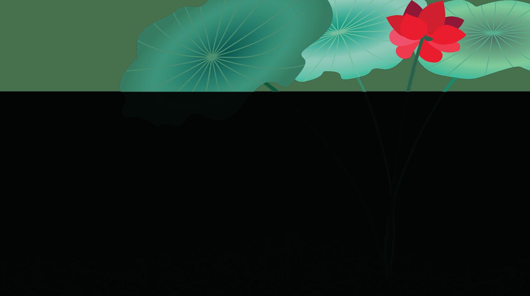 Leading Lotus Background