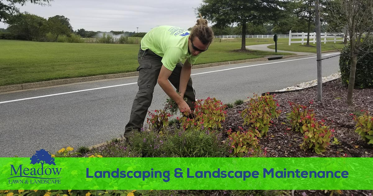 Landscape and landscape maintenance services in VA