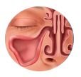 Balloon Sinus Dilation Process - Step 3: Relief