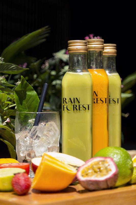 Rainforest Cafe F&B