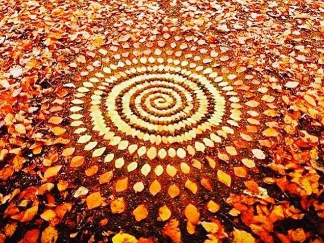"54 Sun Salutations: Autumn Equinox Practice + FREE ""Cider Tasting"" with Bivouac Ciderworks"