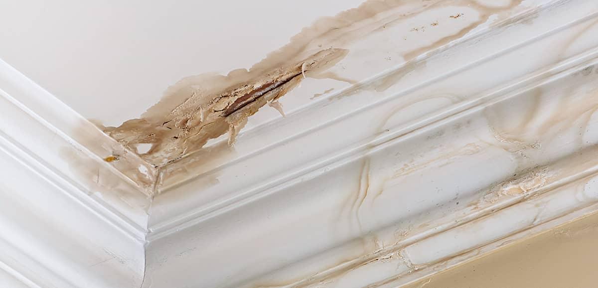 Sinistres : dégâts d'eau et dégâts de feu - Thierry Pittet Peinture