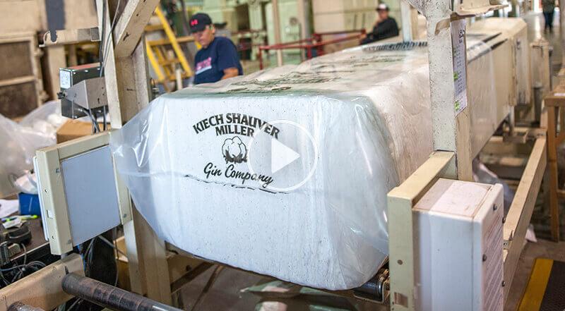 Packaged Cotton in Kiech-Shauver-Miller Gin packaging