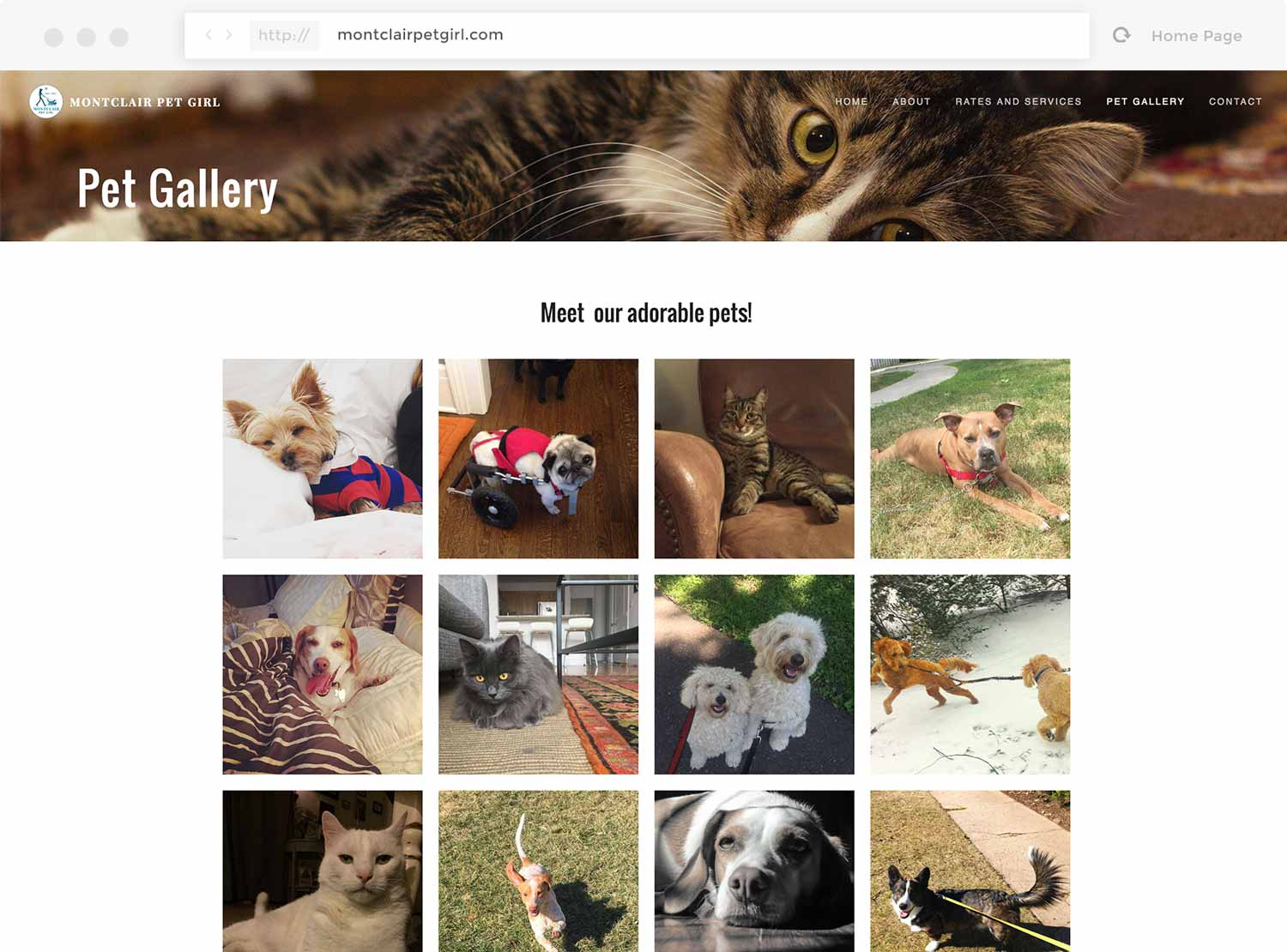 Screenshot of the Pet Gallery page on montclairpetgirl.com