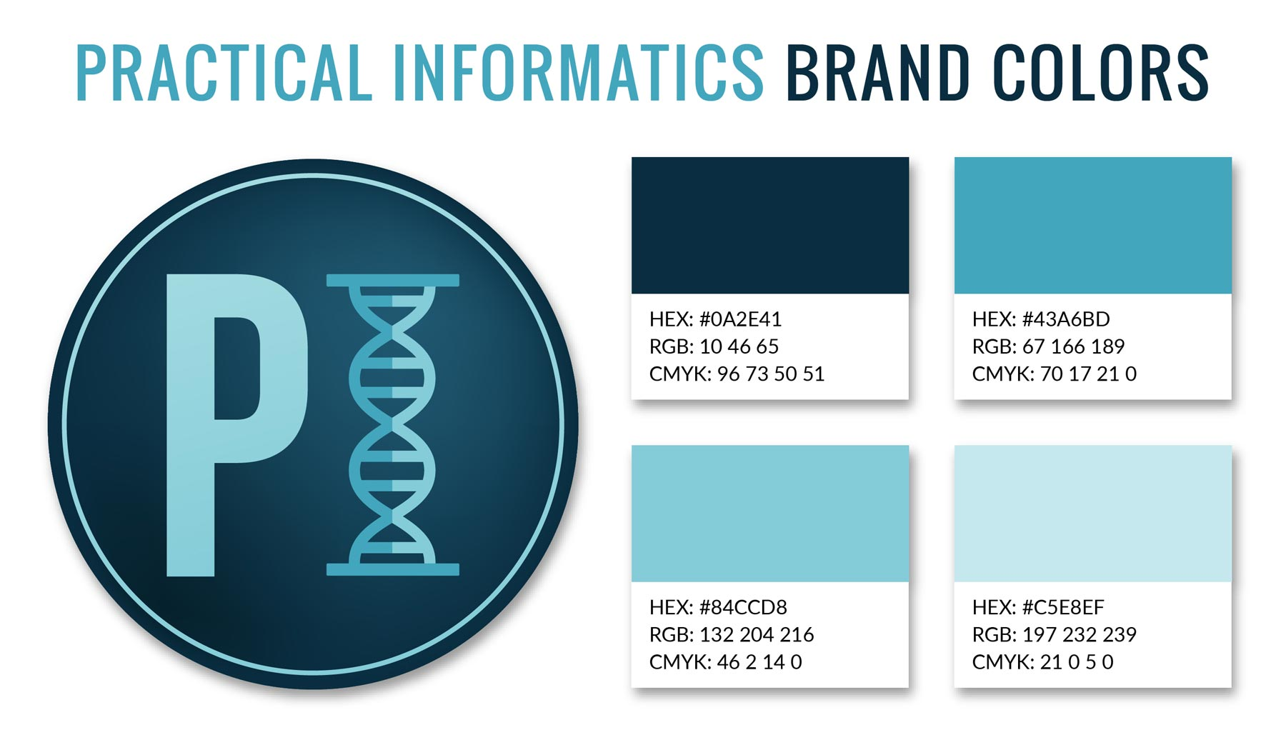 Practical Informatics Brand Colors.