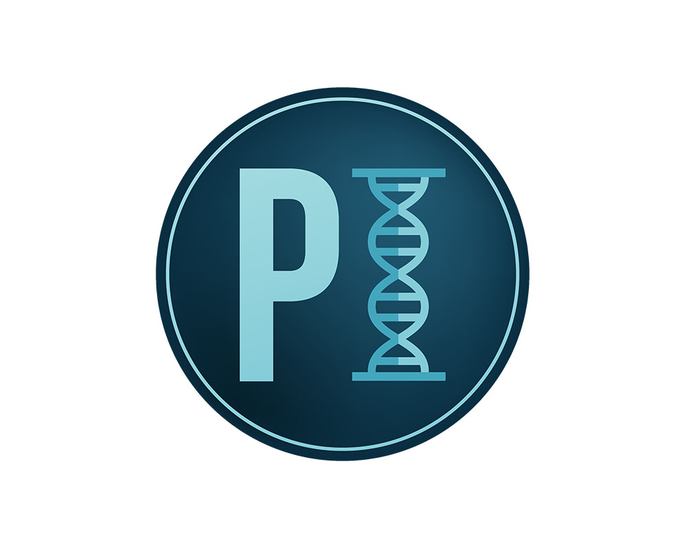 Practical Informatics Logo in Washington State.