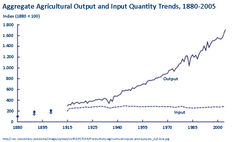 Aggriculture Productivity Growth