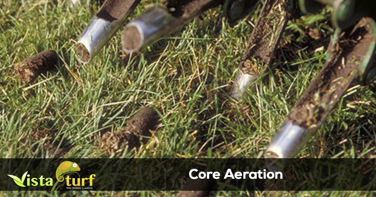 How Often Should My Lawn Be Aerated
