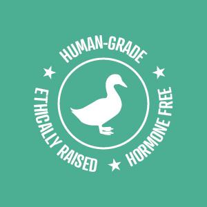 VitaLife Ethics symbol