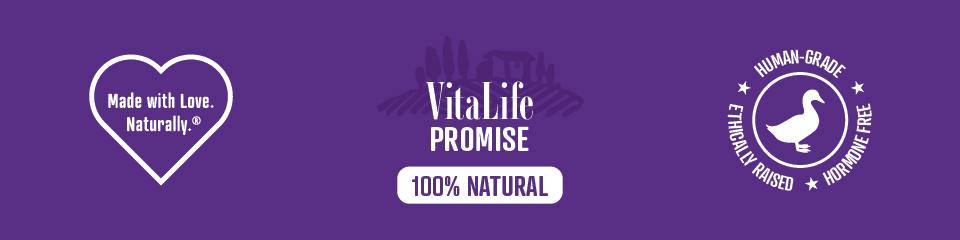 VitaLife Symbols banner in purple