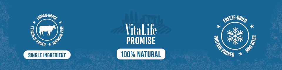 VitaLife symbols banner