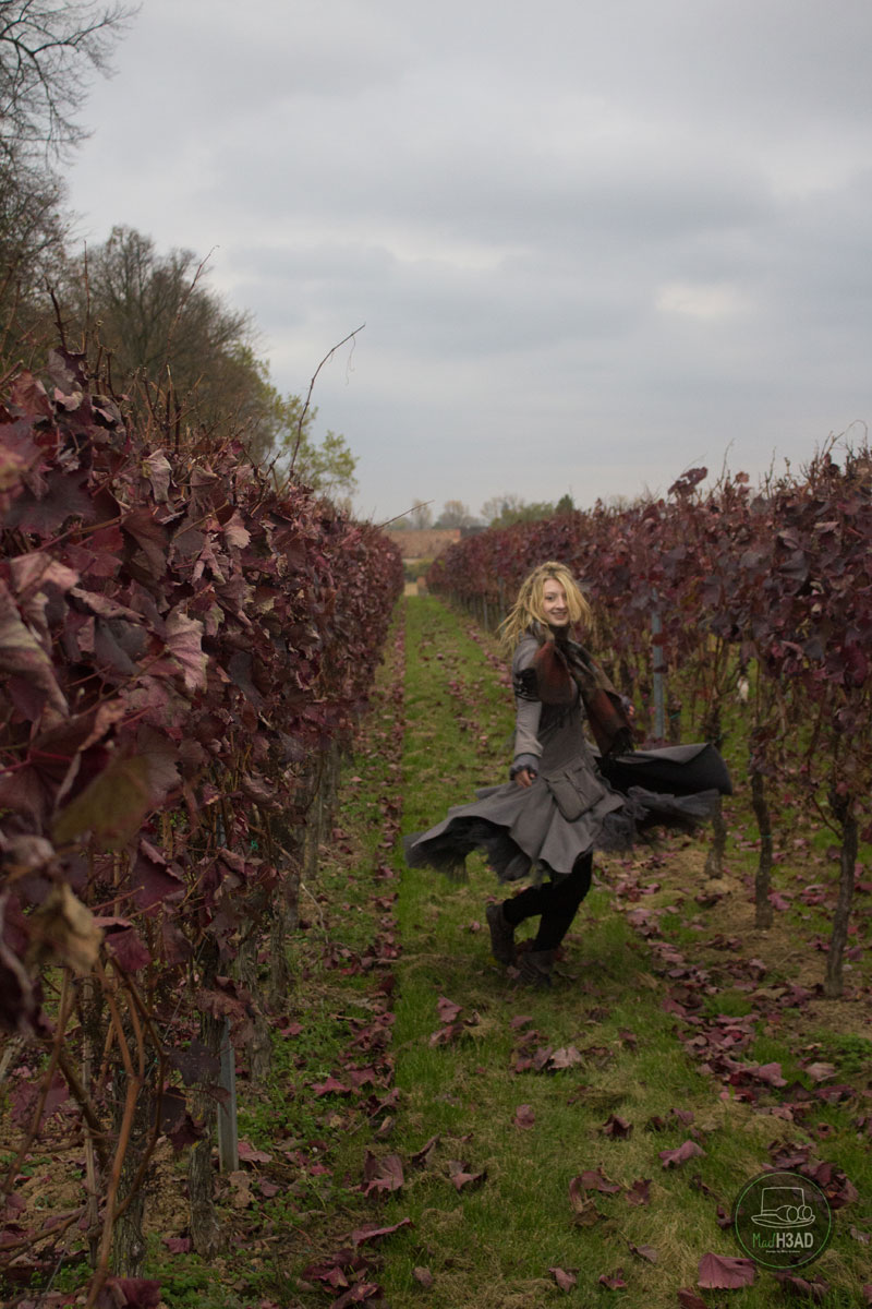 Wein-Abo-Elisa