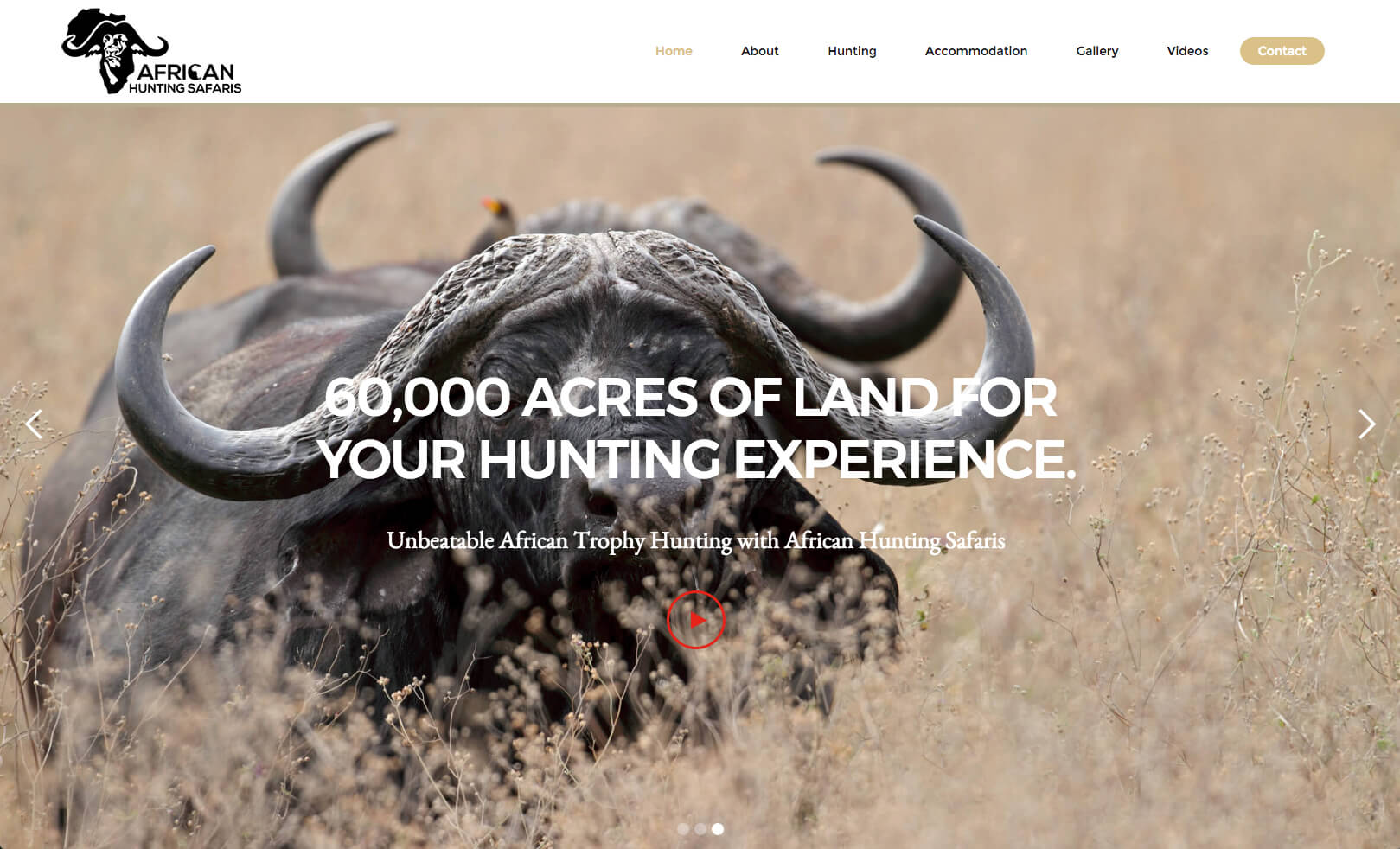 Conceptualising, design of website and hosting services for a hunting outfitter based in the Limpopo province of South Africa.