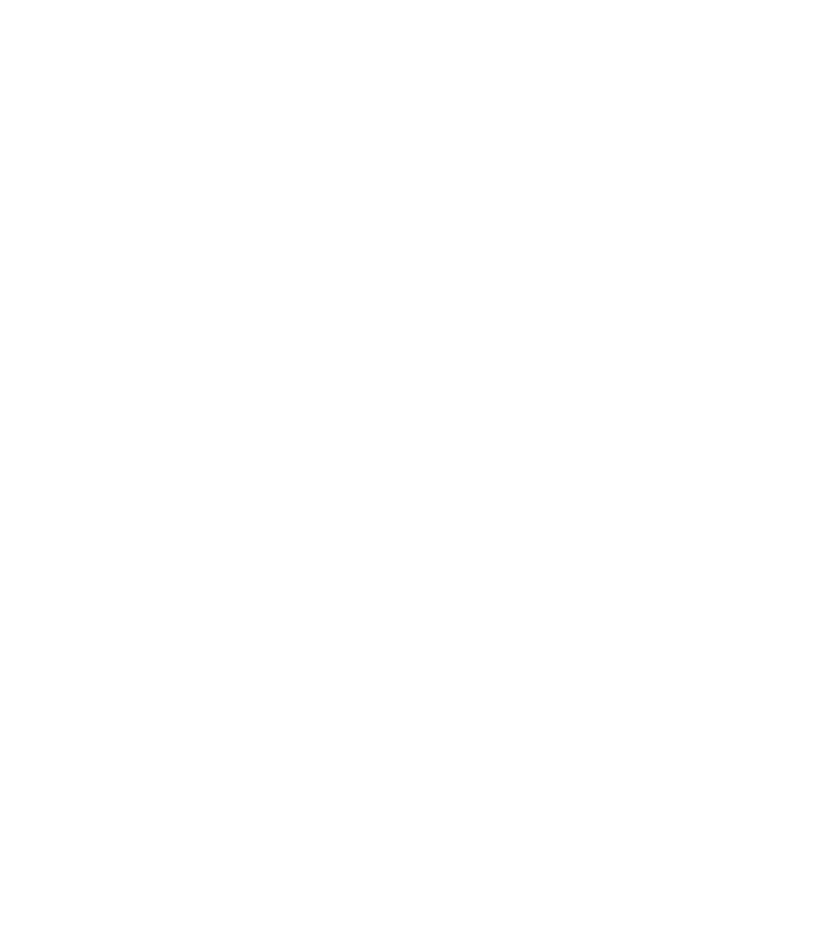 Pala emblem logo