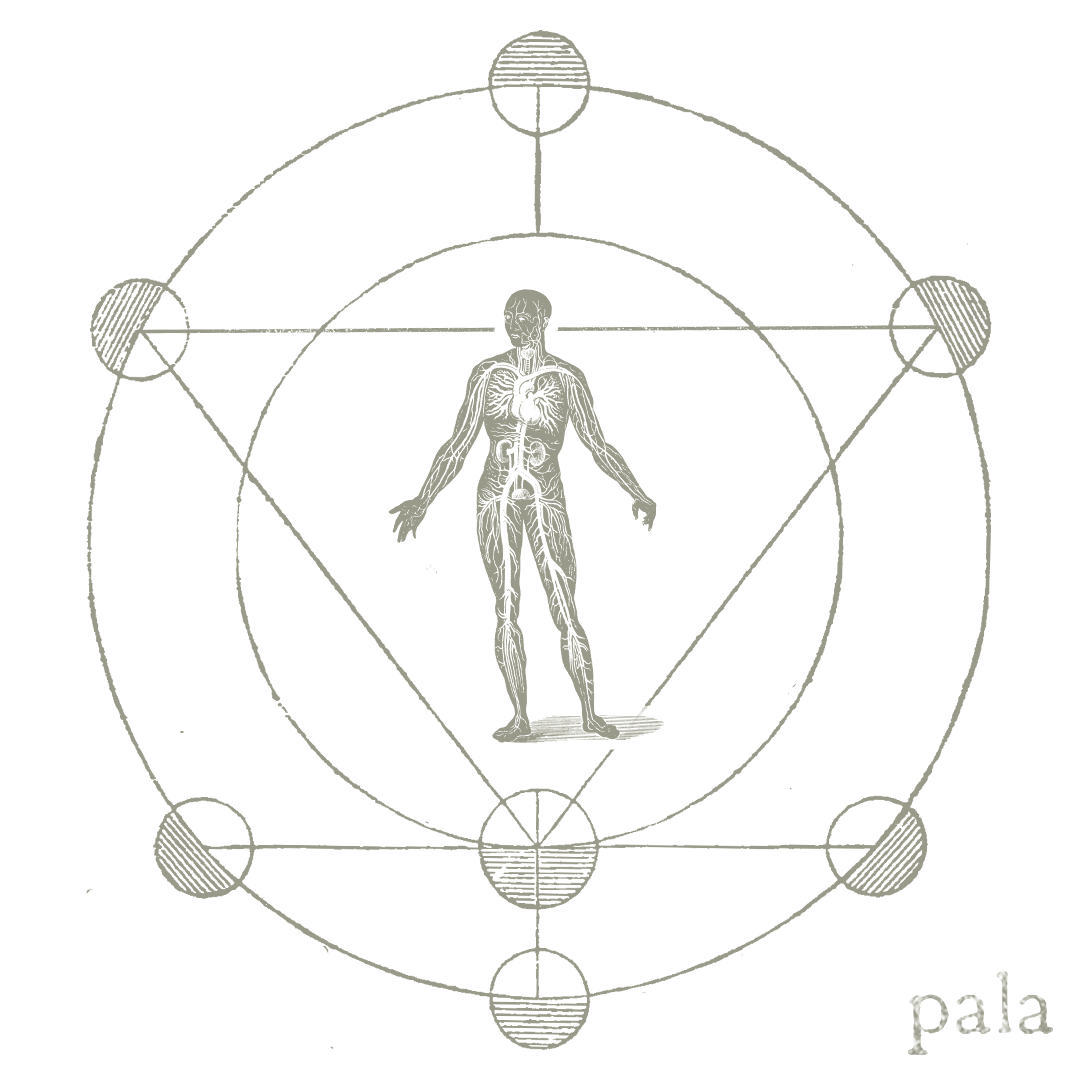 Pala band logo