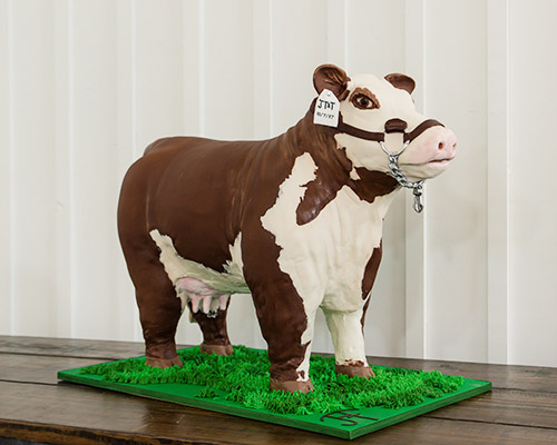 Cattle Groom's Cake