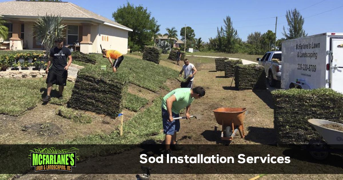 Cape Coral and Fort Myers Sod Installation Services