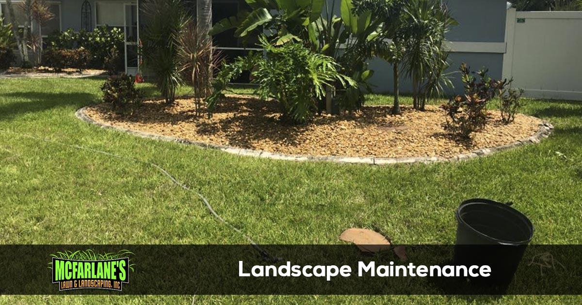 Cape Coral and Fort Myers Landscape Maintenance Company