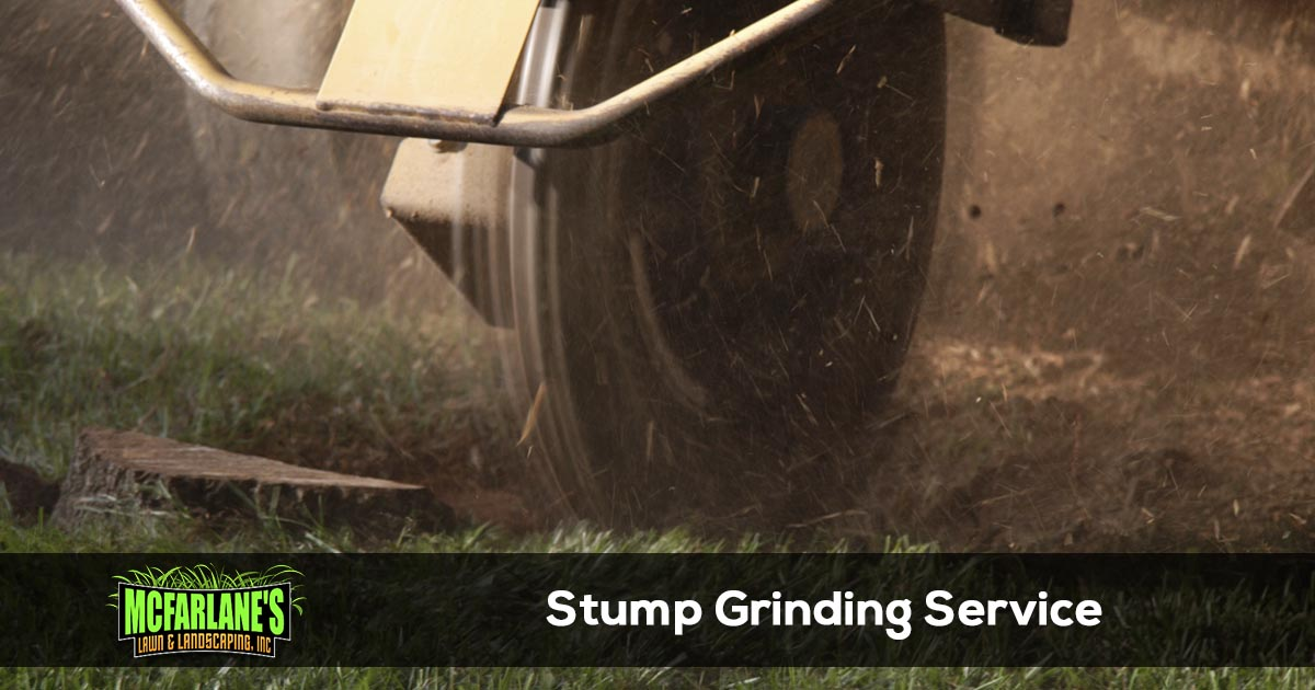 Cape Coral & Fort Myers Stump Grinding Contractor