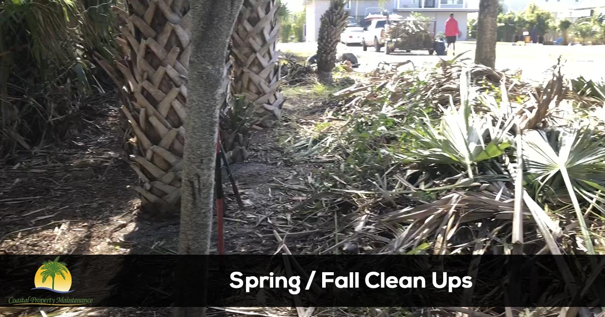 Spring and Fall Clean-Up Services