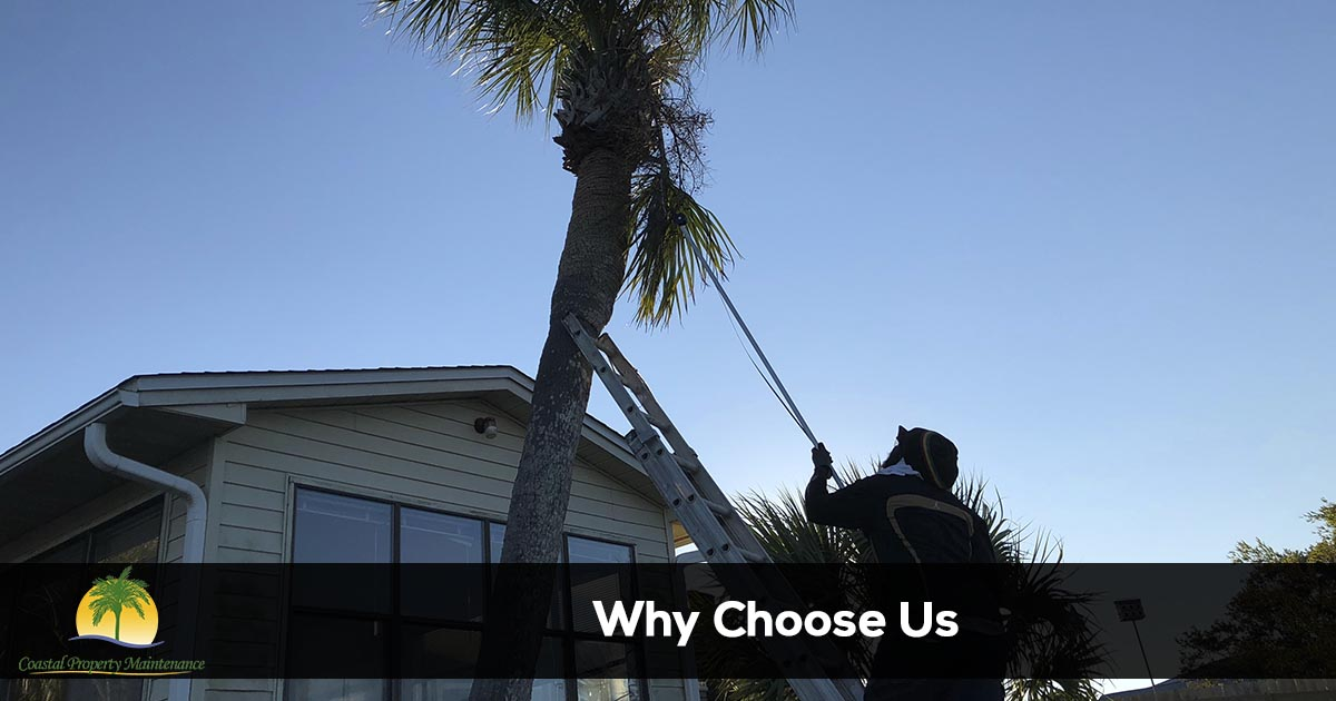 Why Choose Coastal Property Maintenance