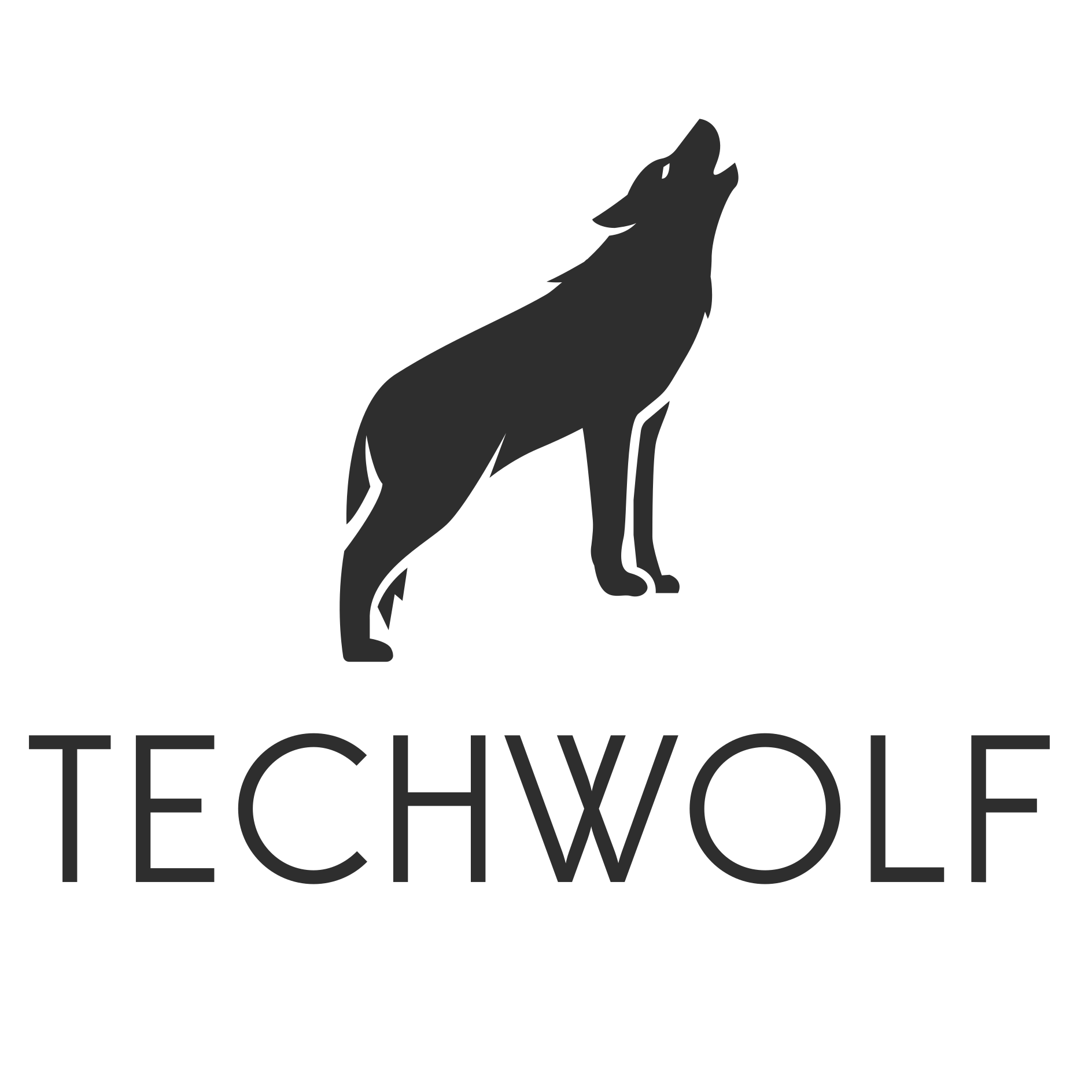 Logo start-up TechWolf