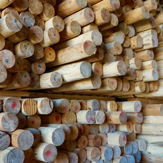 Stored Cedar Logs