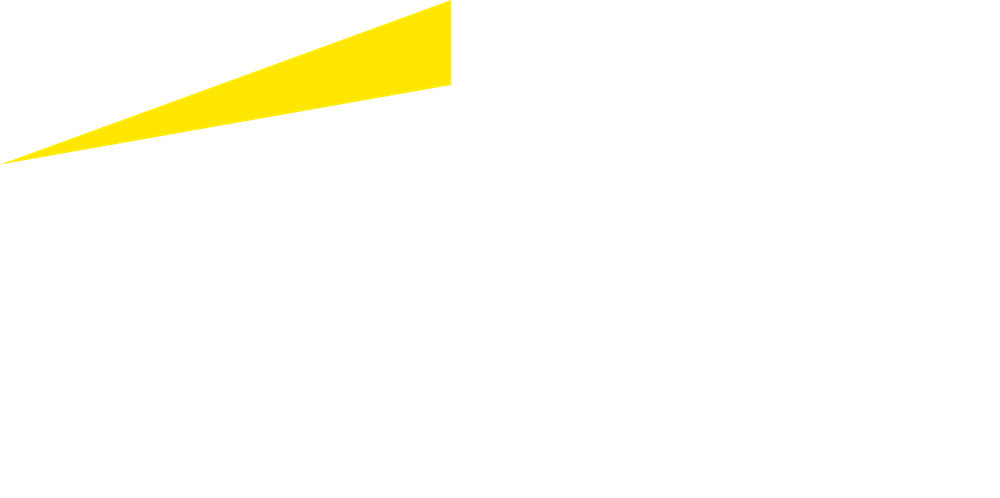 EY Logo White