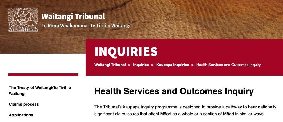 Parliament health services inquiries