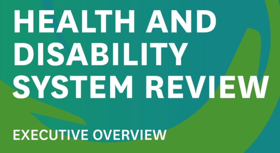 Health and disability system overview
