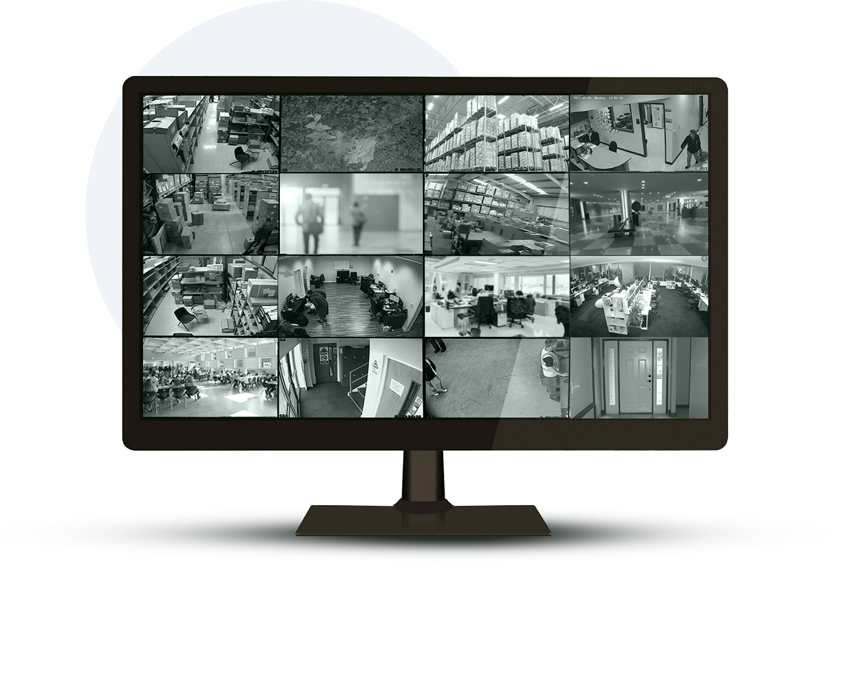 Monitor Cam views