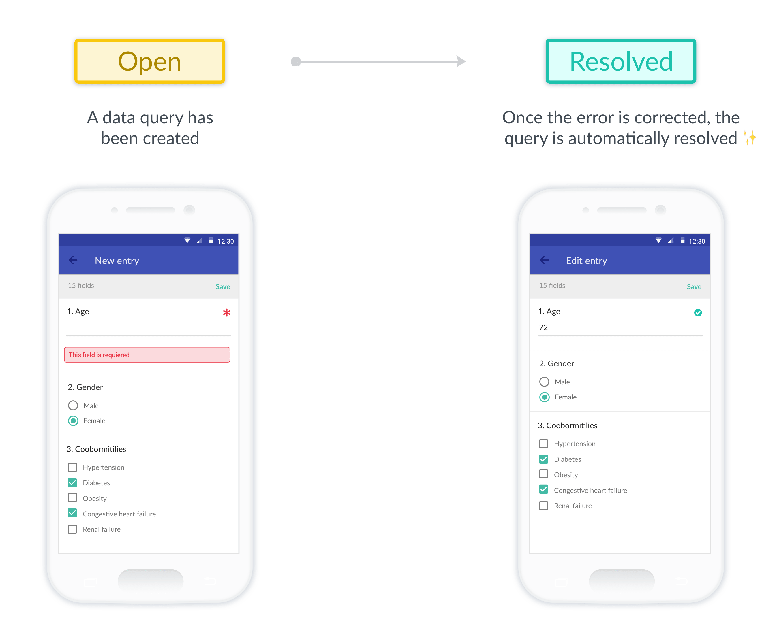 Two examples of the Teamscope app, on the left an invalid field triggering a data query and on the right that issue being resolved after the user fixed the discrepancy