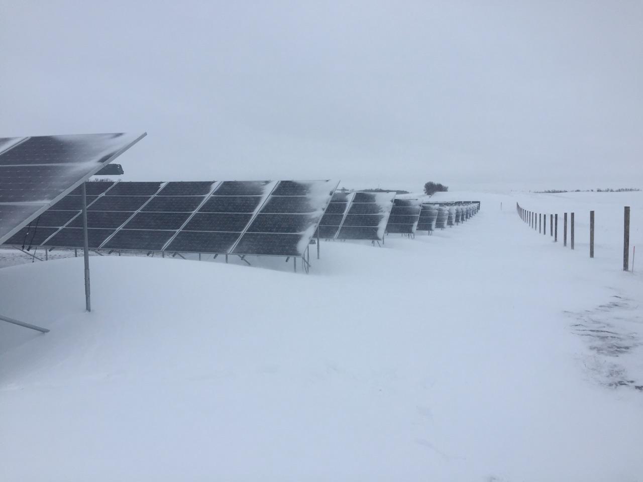 Winter Snow Project