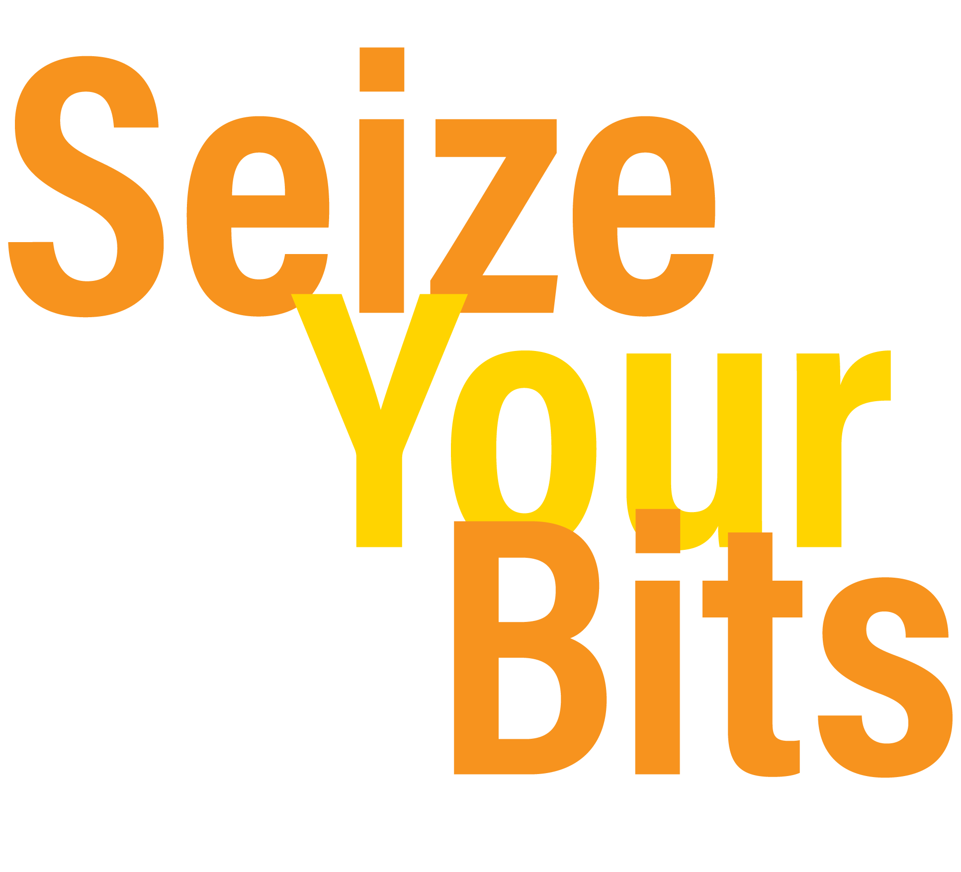 Seize Your Bits, Understanding Digital Currency, digital currency learning, Cryptocurrency information