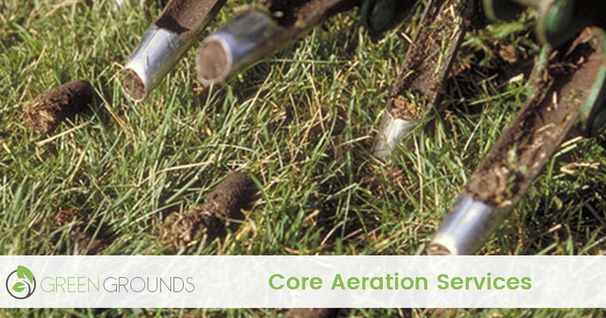 Core Aeration Services