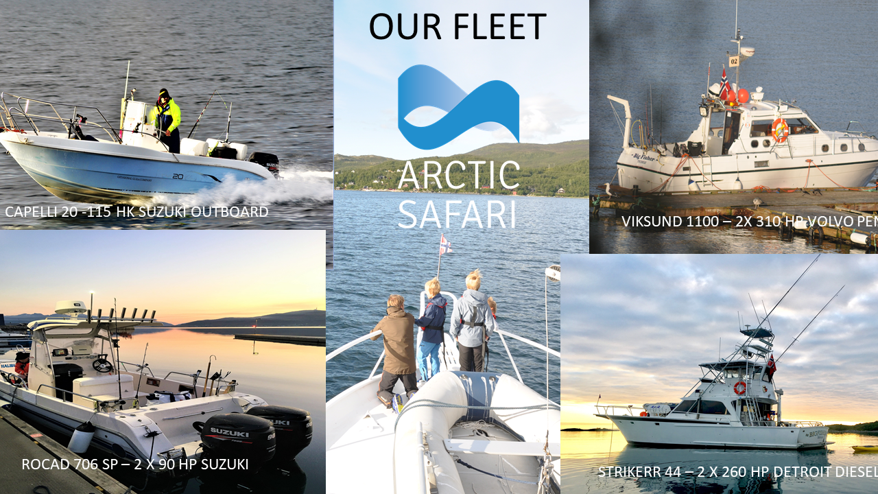 Our Fleet: Capelli 20, Rocad 706, Viksund 1100, Striker 44